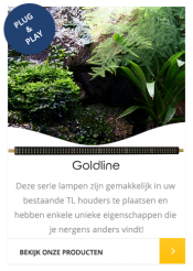 HVP Aqua Goldline